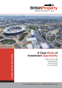 Omega Works Investment Report